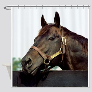 SEATTLE SLEW Shower Curtain