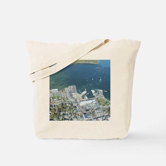 Cute Downeast Tote Bag