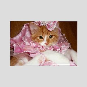 Kitten Wearing Dress Rectangle Magnet