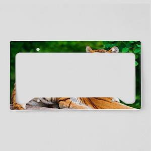 tiger License Plate Holder