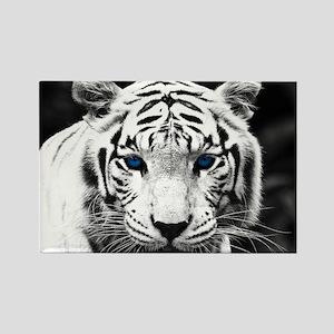 White Tiger Blue Eye Rectangle Magnet