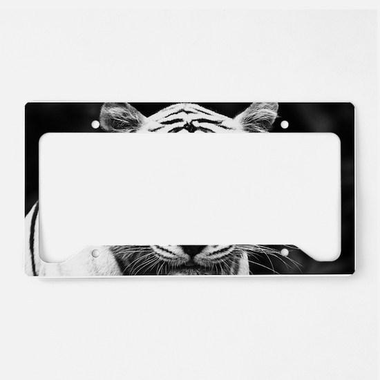 White Tiger Blue Eye License Plate Holder