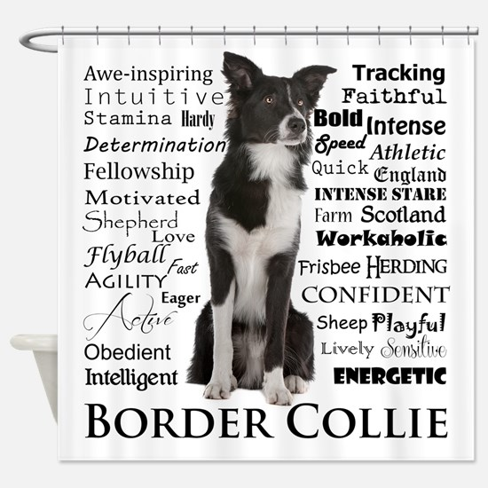 Border Collie Traits Shower Curtain