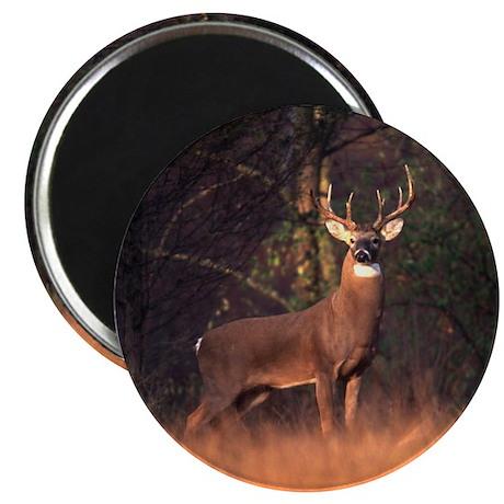 "Whitetail Deer 2.25"" Magnet (10 pack)"