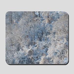 SnowBeauty Mousepad