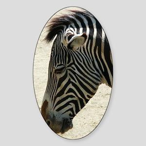 Zebra Sticker (Oval)