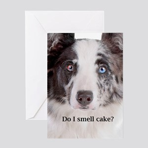 Border Collie Birthday Greeting Card
