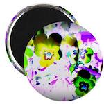 Violets Magnets
