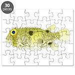 Striped Burrfish Porcupinefish fish Puzzle