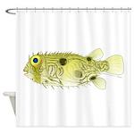 Striped Burrfish Porcupinefish fish Shower Curtain