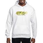 Striped Burrfish Porcupinefish c Hoodie