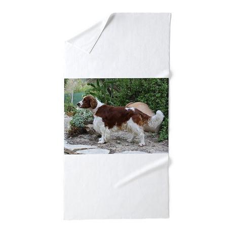 Welsh Springer Spaniel Beach Towel