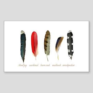 Nature Art Bird Feathers Sticker