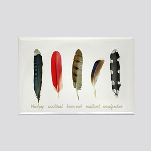 Nature Art Bird Feathers Magnets