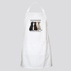 Creation of Labs Apron