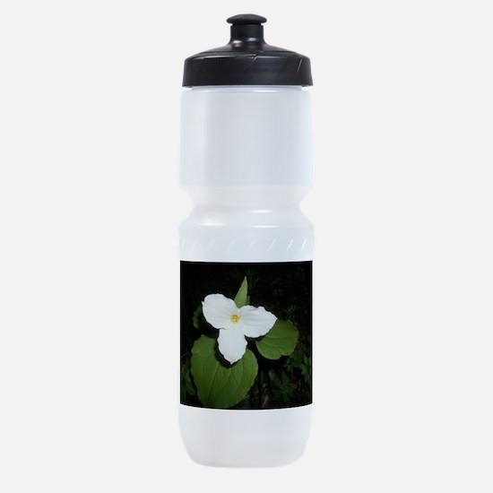 trillium Sports Bottle