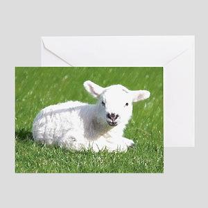 Easter Lamb 01 Greeting Cards