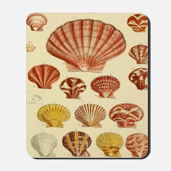 Beach Seashell Artwork Mousepad
