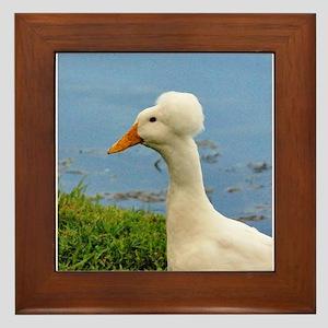 White Crested Duck Framed Tile