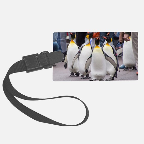 Penguin Parade Large Luggage Tag