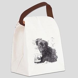 Perk sketch Canvas Lunch Bag