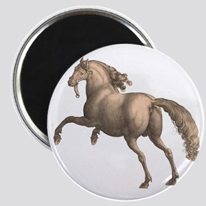 Andalusian Horse Galloping Stallion Magnet