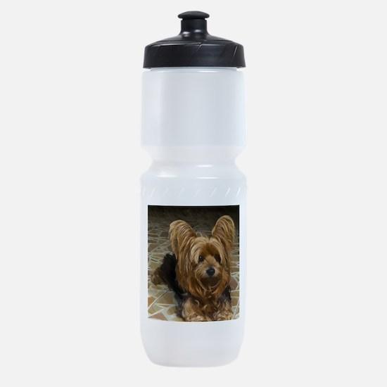 Yorkshire Terrier Sports Bottle