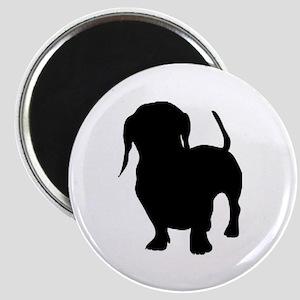 dachshund 2 Magnets