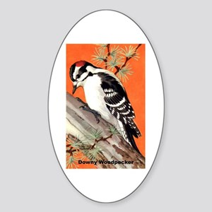 Downy Woodpecker Bird Oval Sticker