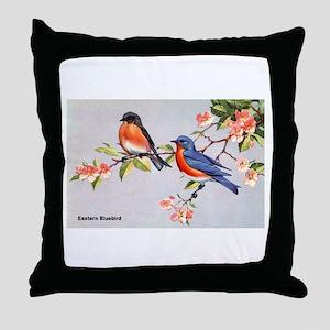 Eastern Bluebird Bird Throw Pillow