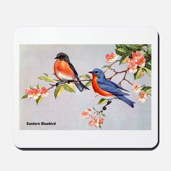 Eastern Bluebird Bird Mousepad