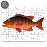 Cubera Snapper dark Puzzle