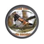 Spotted Towhee Wall Clock