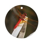 Red Dragonfly Ornament (Round)