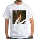 Red Dragonfly White T-Shirt