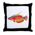 McCoskers flasher wrasse Throw Pillow