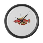 McCoskers flasher wrasse Large Wall Clock