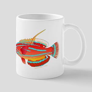 McCoskers flasher wrasse c Mugs