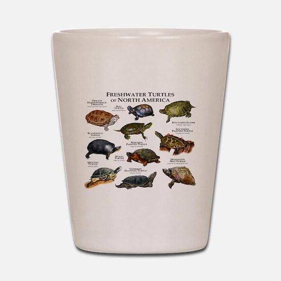 Freshwater Turtle of North America Shot Glass