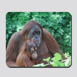 Orangutan Mom with a Baby Mousepad