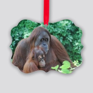 Orangutan Mom with a Baby Picture Ornament
