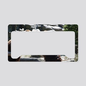 Brawling Bears License Plate Holder