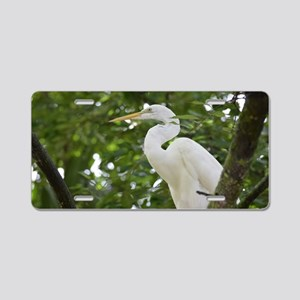White Egret Bird in a Tree Aluminum License Plate