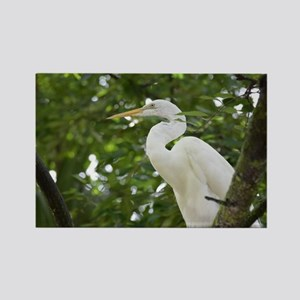 White Egret Bird in a Tree Rectangle Magnet