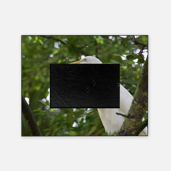 White Egret Bird in a Tree Picture Frame