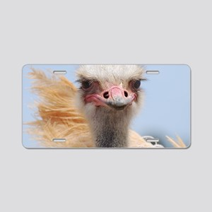 Ostrich Feathers Aluminum License Plate