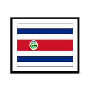 Costa Rica National flag Framed Panel Print