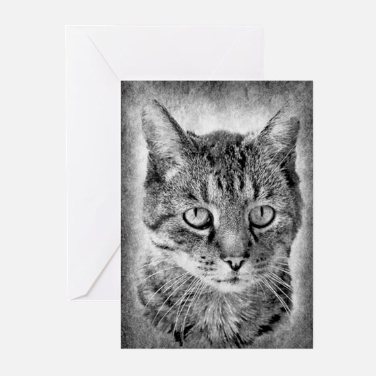 Charlie The Cat Greeting Cards
