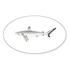 Grey Blacktail Reef Shark Decal