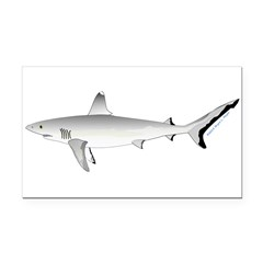 Grey Blacktail Reef Shark Rectangle Car Magnet
